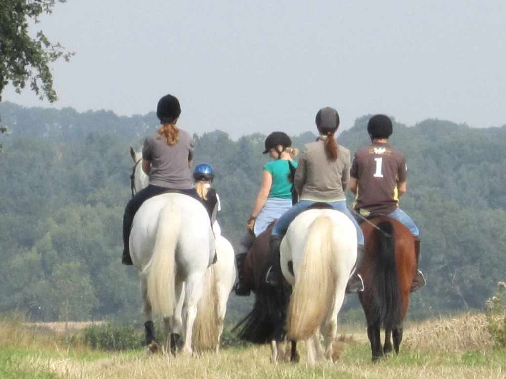 riders on horseback at the Isle Estate B&B